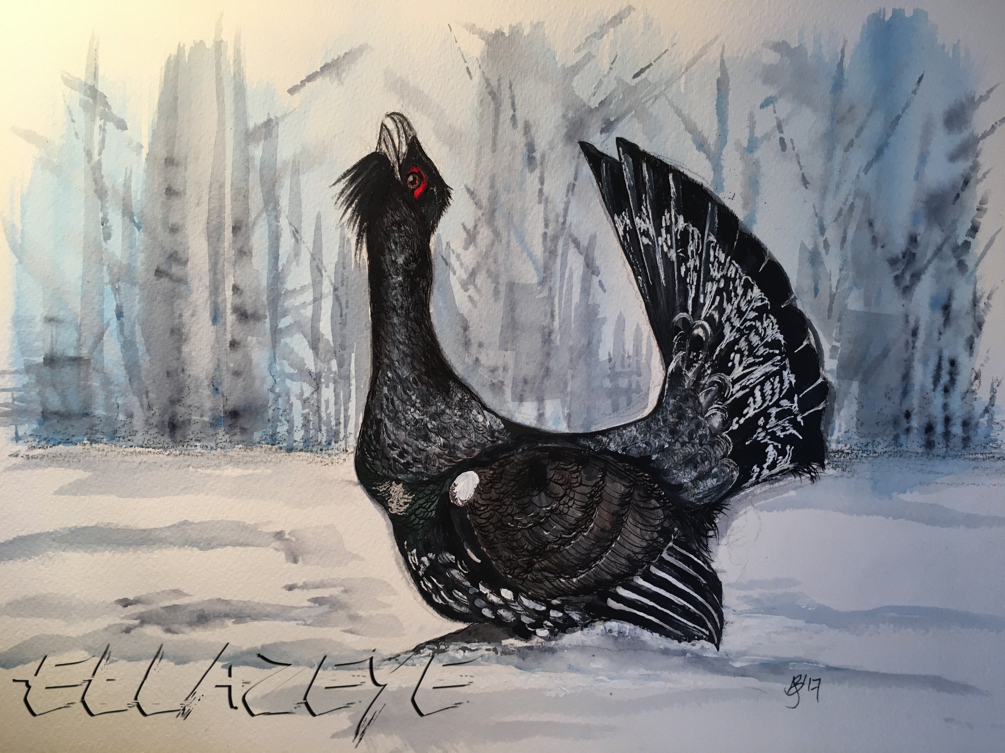 Winter Capercaillie