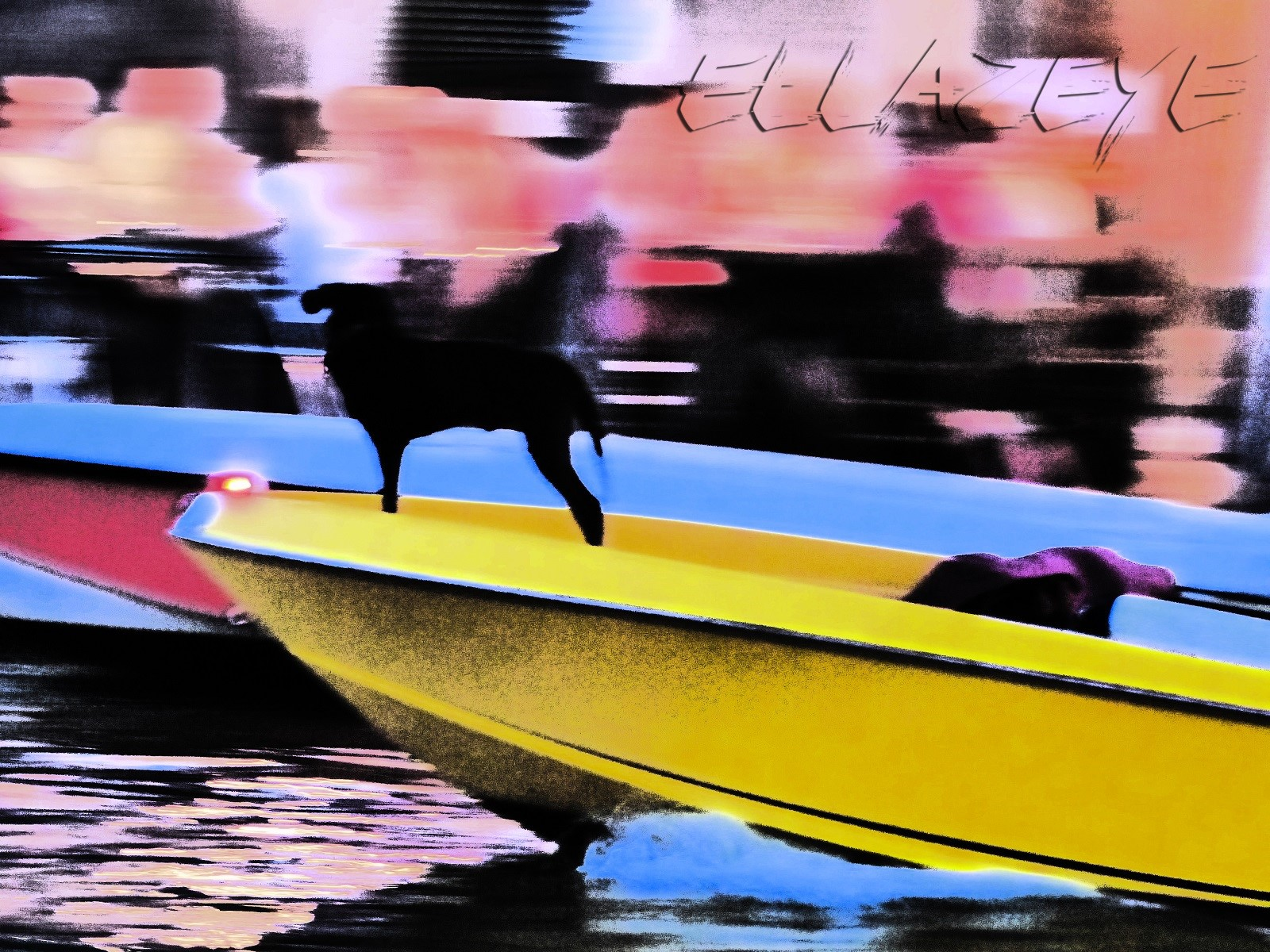 Venetian Canal Dog