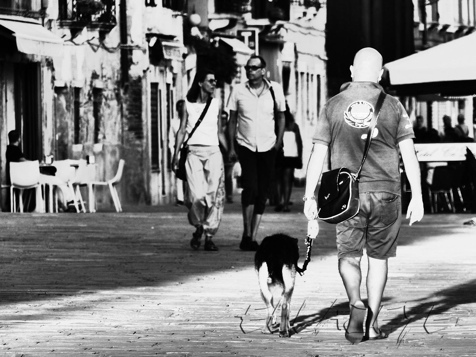 Venetian Stroll