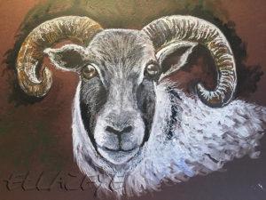 Sheeps' Heid