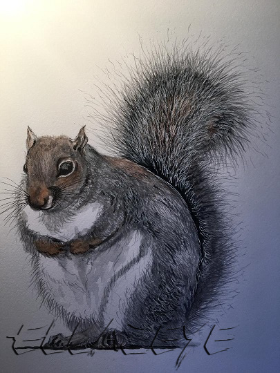 Who Ate All The Nuts